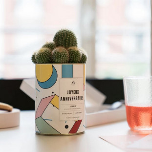 JOYEUX ANNIVERSAIRE Cactus