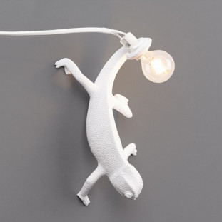 Lampe Cameleon - Going Down